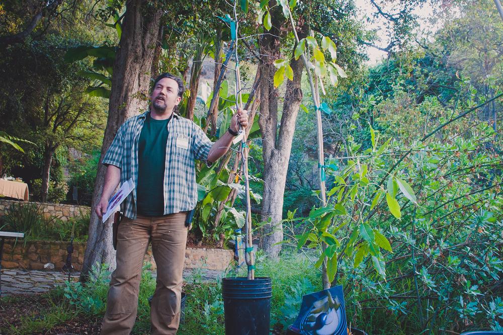 Banner-TreeTalk.jpg