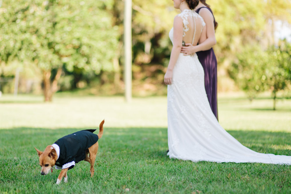 2018.02.17 Whitney and Joe Meyer Melbourne Wedding (124 of 890).jpg