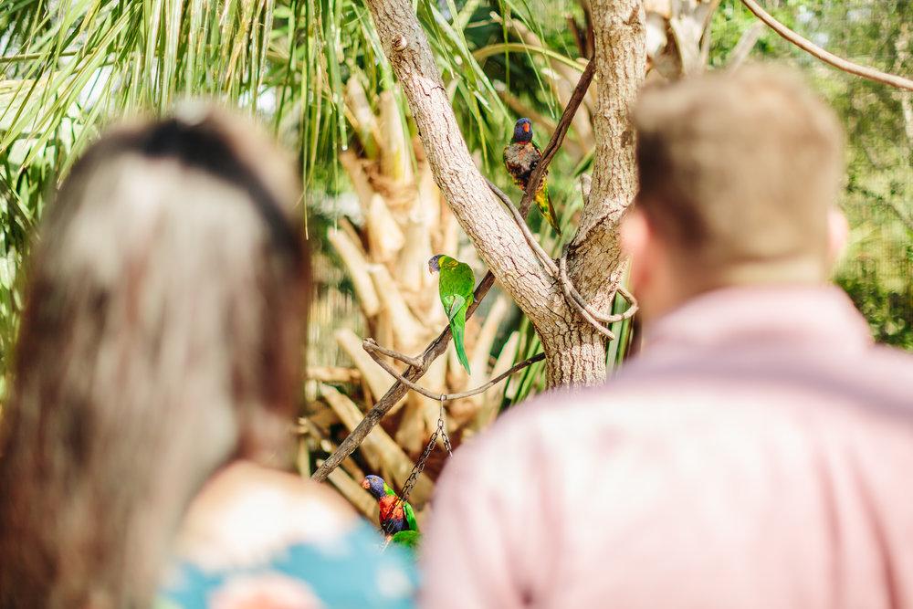 2018.05.01 Ashleigh and Nathan Brevard Zoo Engagement Session-76.jpg