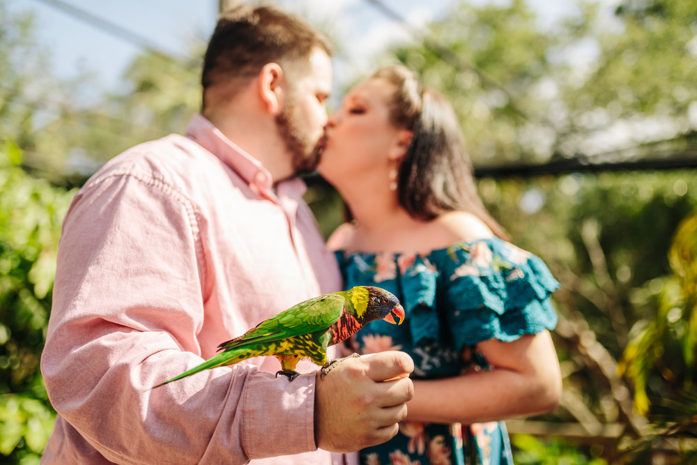 2018.05.01 Ashleigh and Nathan Brevard Zoo Engagement Session-93.jpg