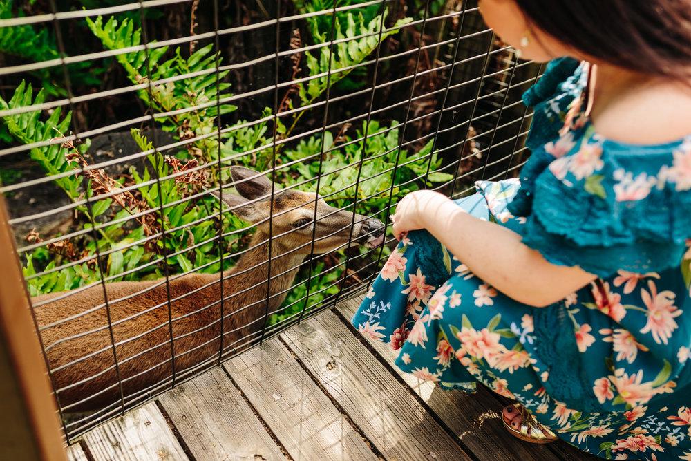2018.05.01 Ashleigh and Nathan Brevard Zoo Engagement Session-106.jpg