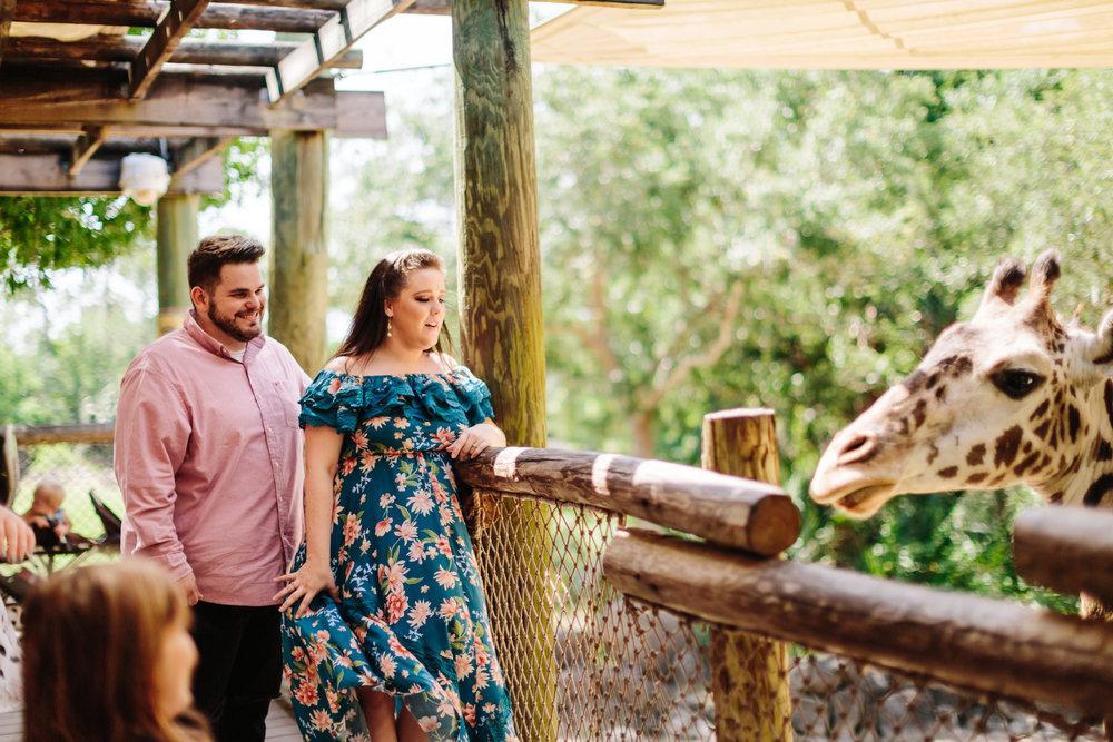 2018.05.01 Ashleigh and Nathan Brevard Zoo Engagement Session-157.jpg