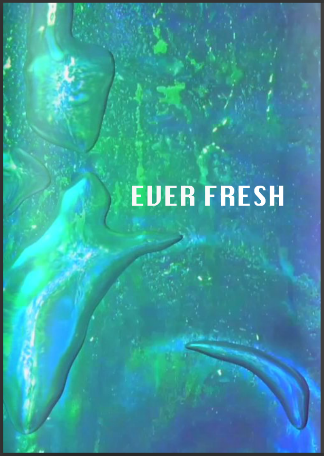 Online Catalogue for Ever Fresh exhibition at Stills Gallery, Sydney, Australia