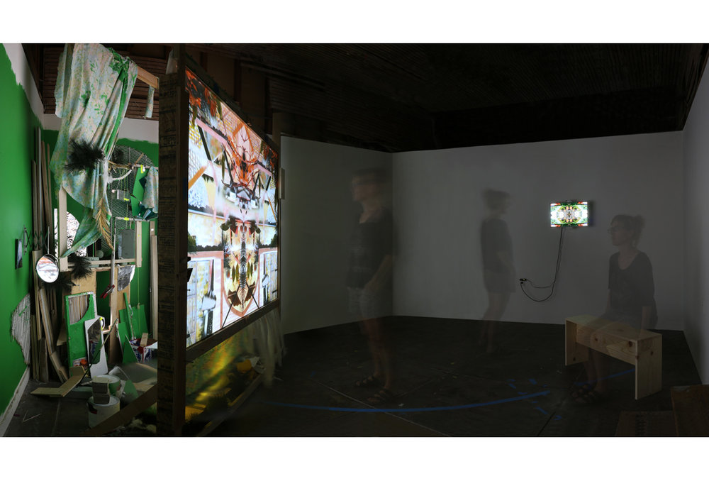 Installation view at Elephant Art Space, Glassell Park, CA, 2016    Project funded by the Foundation for Contemporary Arts Emergency Grant
