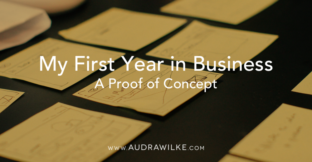 Blog-05-My-First-Year-in-Business-A-Proof-of-Concept.png