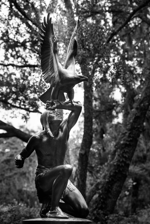 brookgreen garden myrtle beach-14.jpg