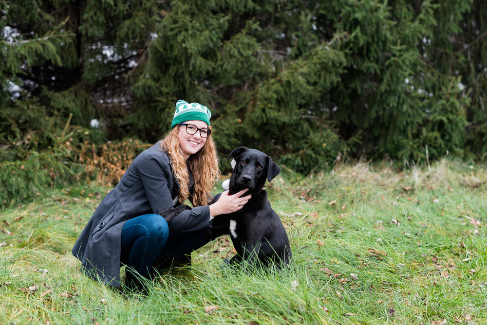 bowling green pet photography black lab-19.jpg
