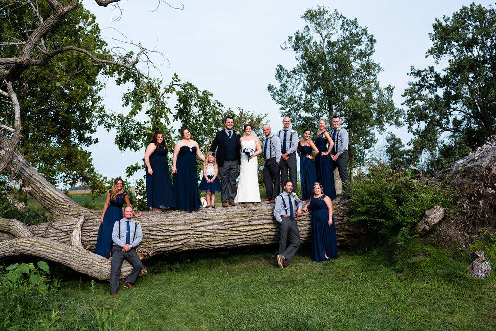 northwest ohio wedding photography