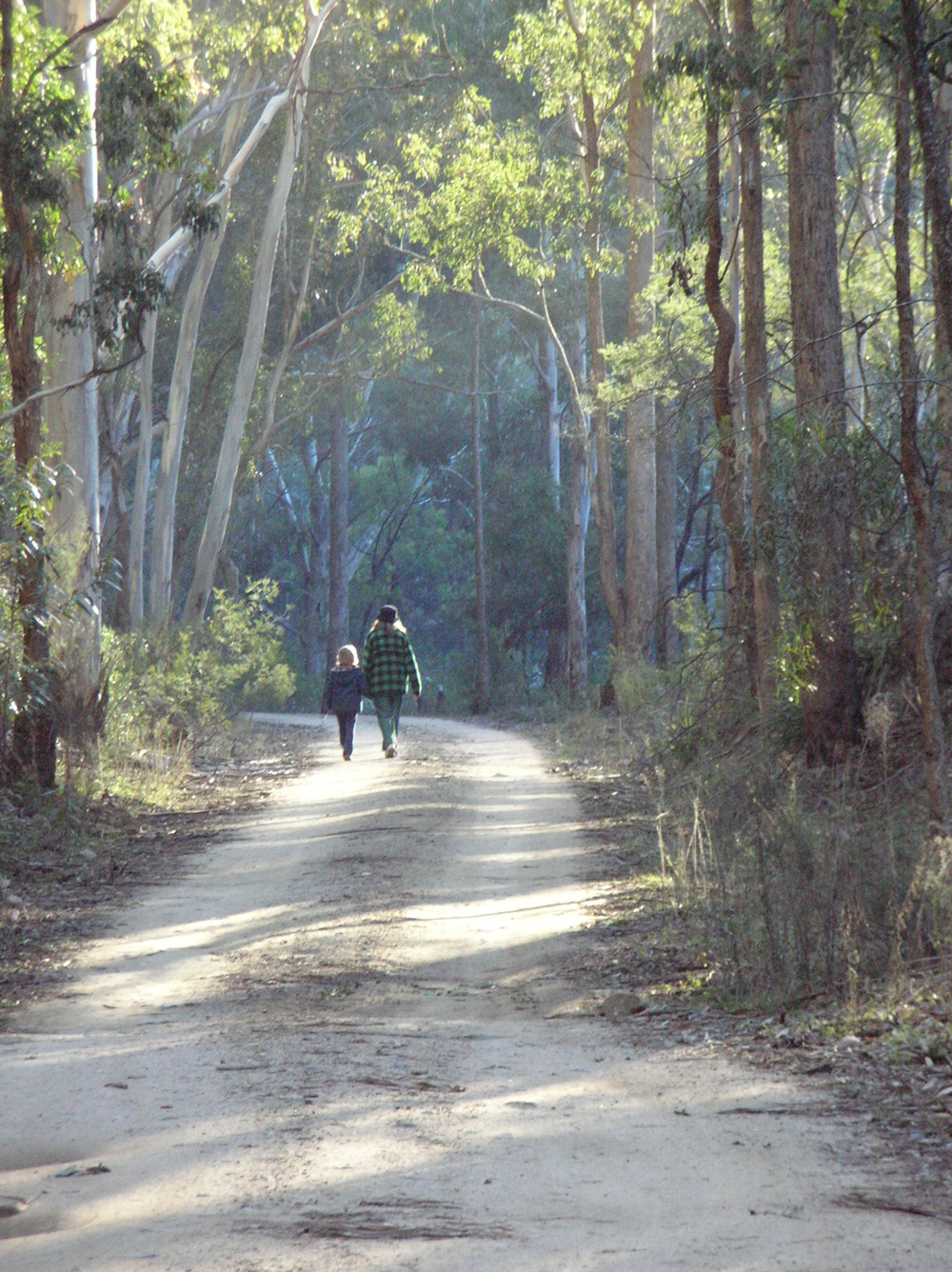 Walk. Newnes old railway line.jpg