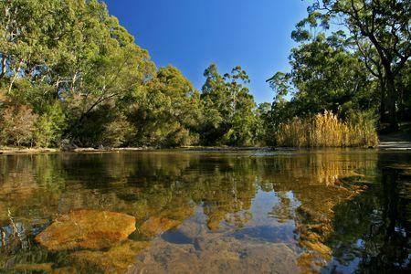 Wolgan River 2.jpg