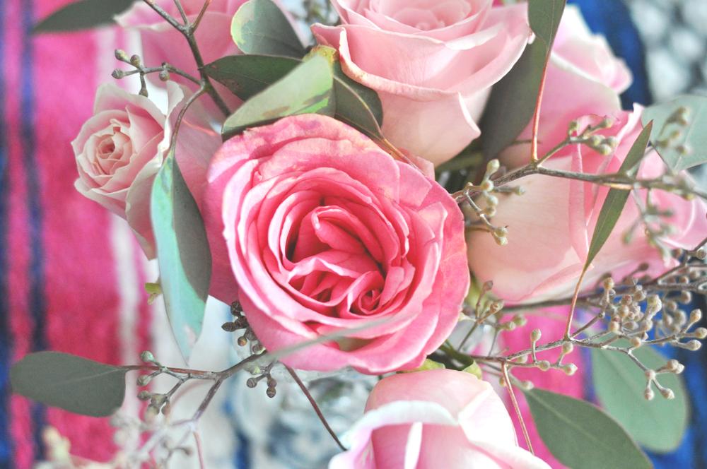 rosas p Manu.jpg
