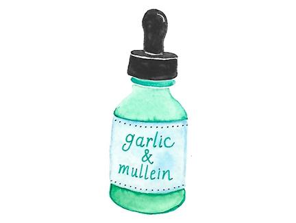 garlic mullein.jpg