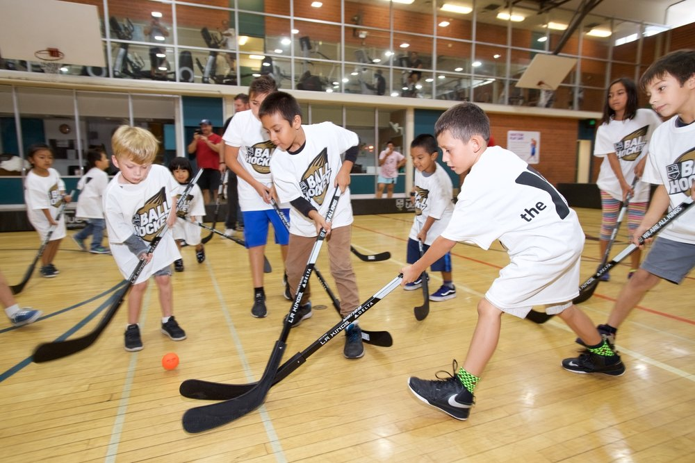 Youth Floor Hockey Clinics - Spring Registration - This program emphasizes the fundamentals of hockey as well as fair play, sportsmanship and FUN. Season lasts 7 weeks and each player is guaranteed to play at least 1/2 of every game.