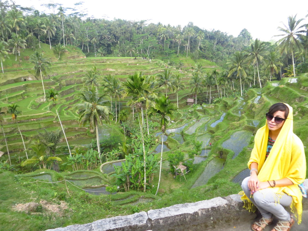 Rice_Terrace_Bali.jpeg