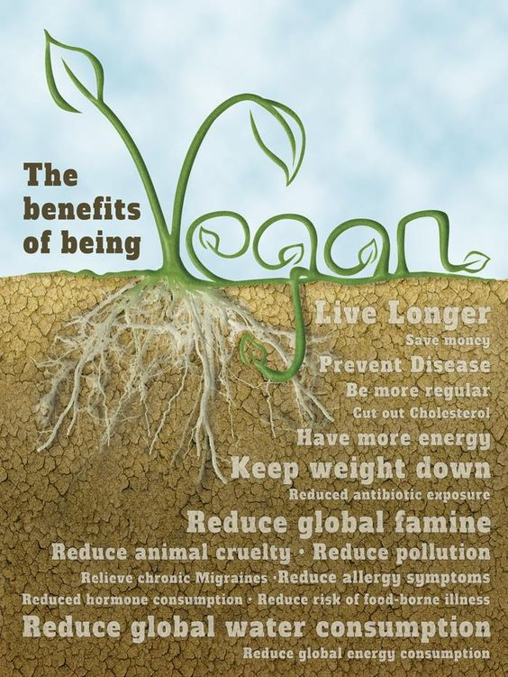 vegan_benefits