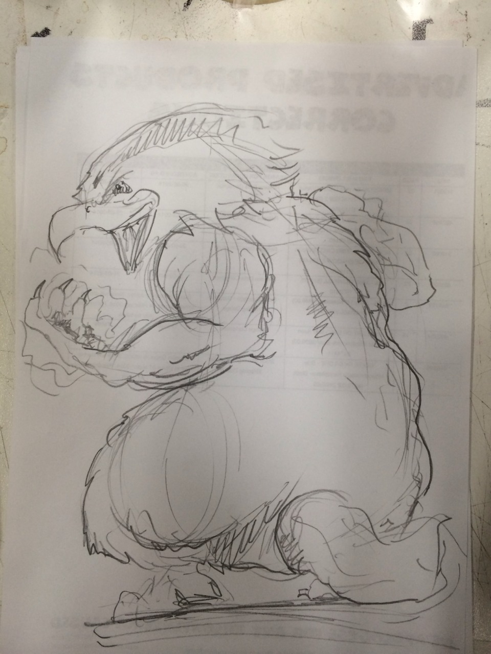 Rough sketch I did attempting to manifest my buddy Michael's creative vision… Behold his epic majesty! The Eagle-Badger!