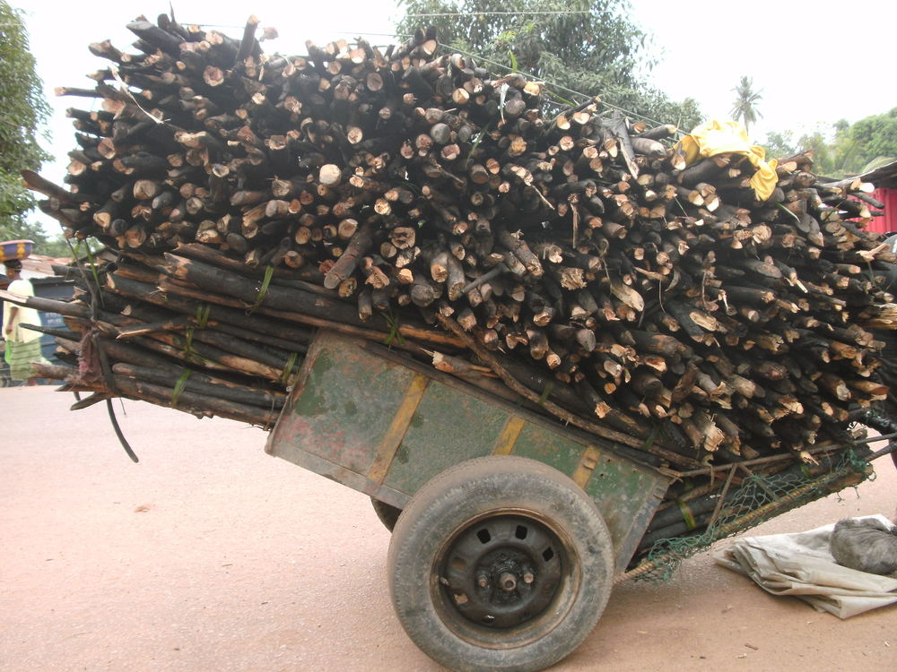 Fuelwood trailier. Photo taken by Energy For Opportunity