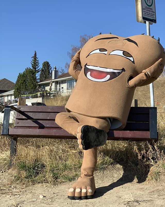 When the weather calls for above zero all week! We are ready to soak up some mid winter rays. . . . . .  #holdyourballs #checkyourballs  #oneball #oneballcharity #testicularcancer #testicle #cancer #charity #yyccharity #yyc #grabyourballs #tc #ballcancer #kickcancerintheballs