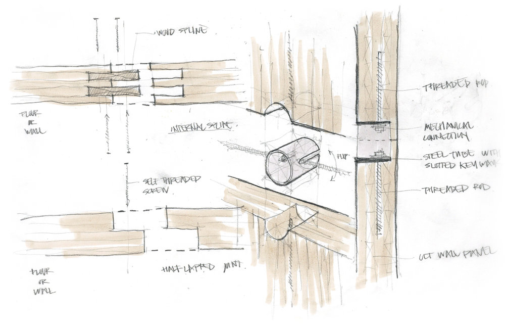 Structural Concept Sketch 02  /  CLT Spline Studies