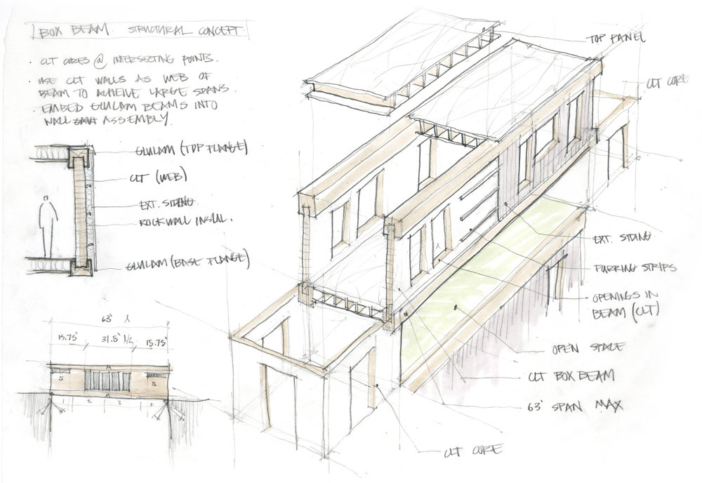 Structural Concept Sketch 01  /   CLT Box Beam Assembly