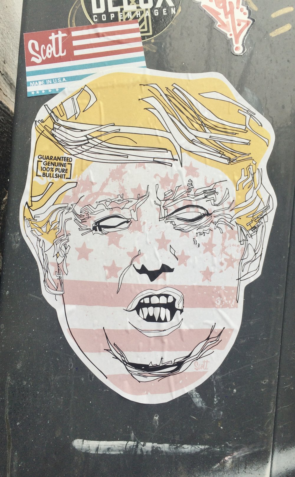 Trump Sticker, photo by author