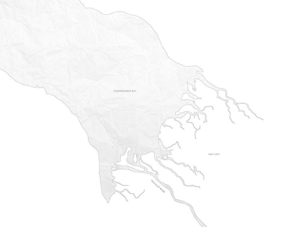 Puyallup River Delta