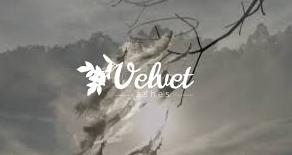 velvet ashes