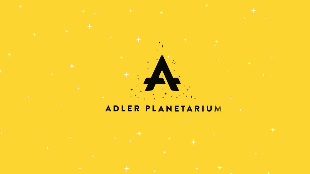 Adler_Rain_v008.jpg