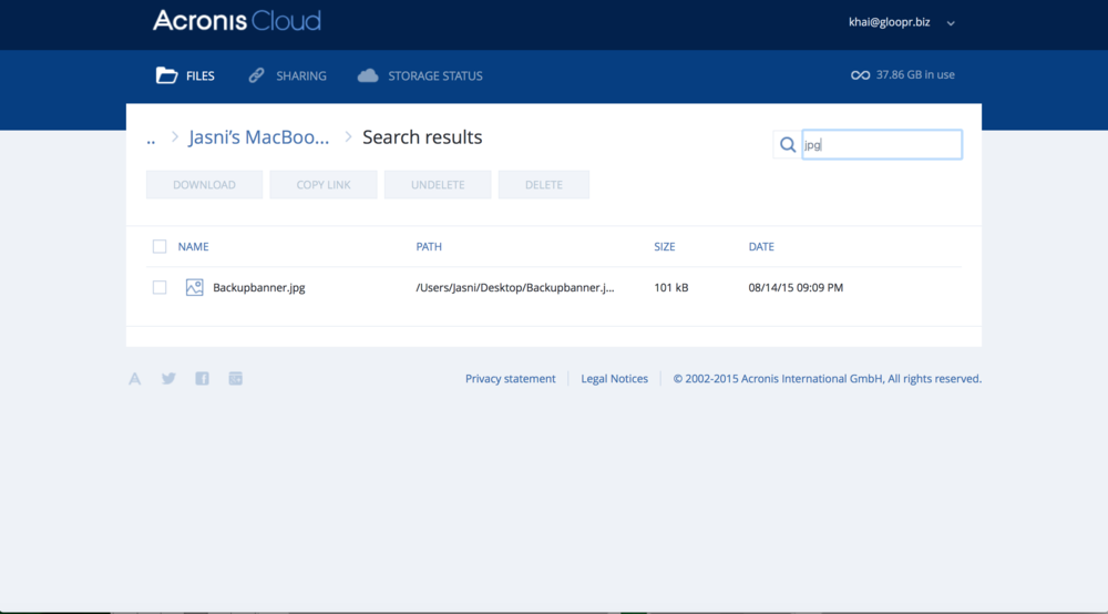 Searching for a file in the Acronis Cloud Archive is easy-as-pie with its search function.