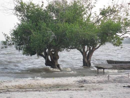 Les vents violents font partie des aléas climatiques auxquels le Benin fait face. © PNUD Bénin