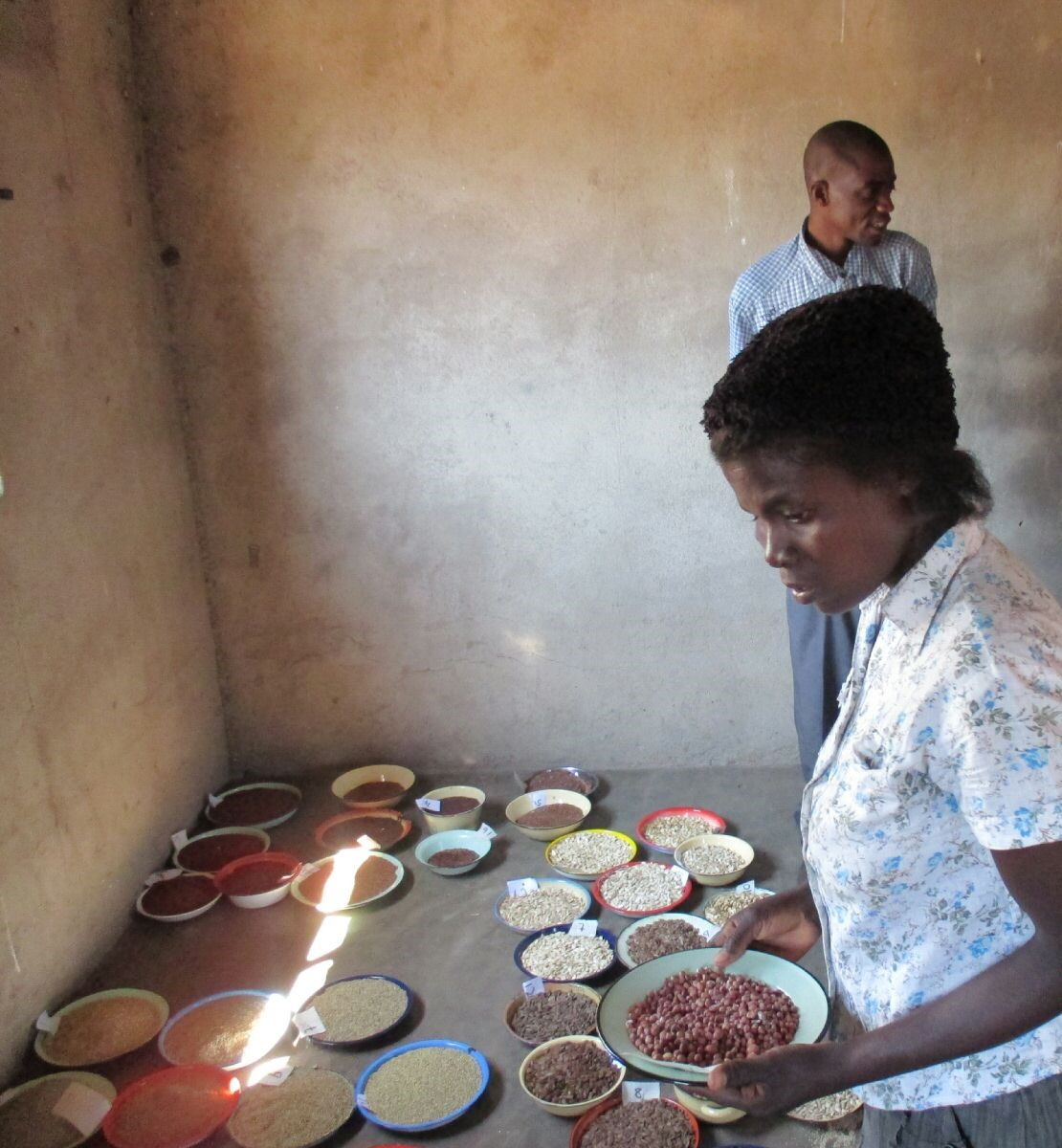 Women now actively participate in seed fairs. @ Locadia Mavhudzi