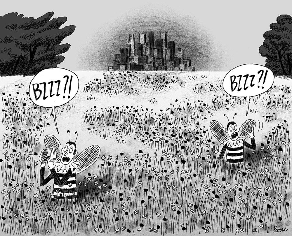 Les États-Unis volent au secours des abeilles. © Pierre Dubois / Juin 2015