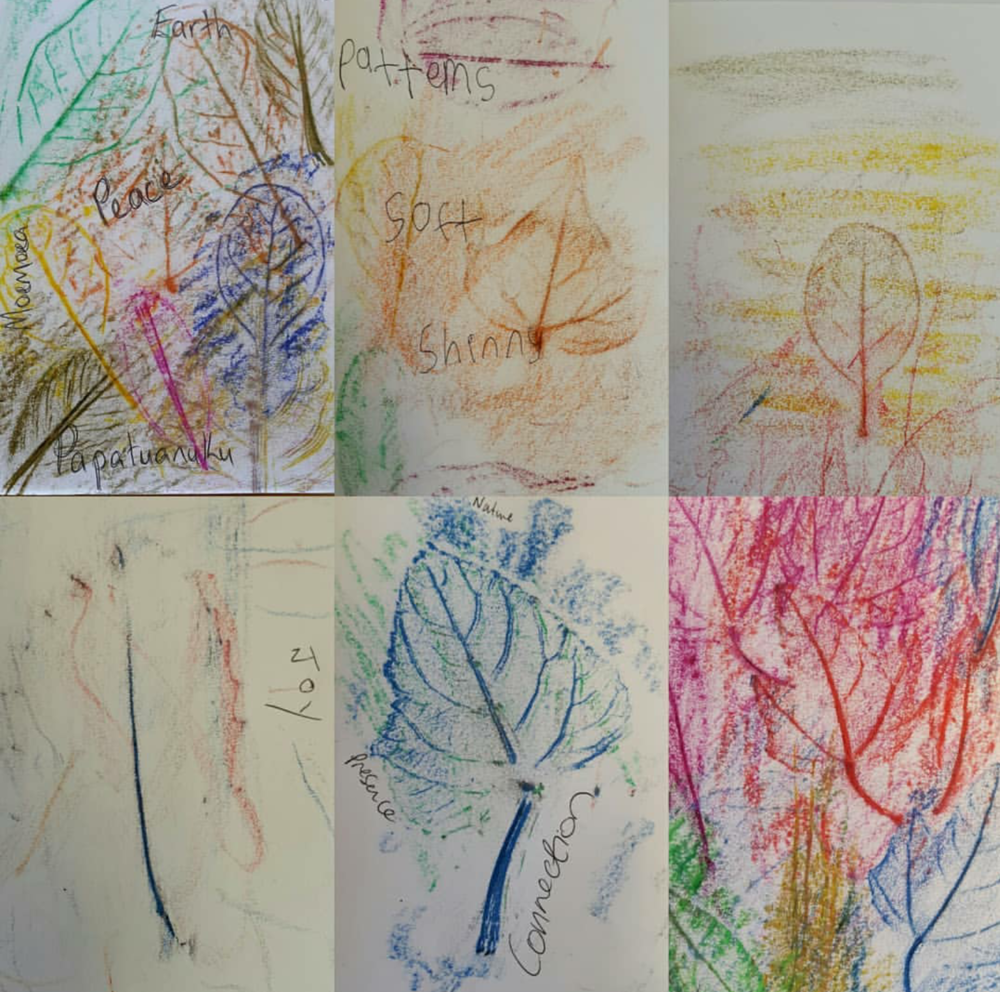 Leaf Drawings by participants of our class. Made by leaves collected at Hikoikoi Reserve.