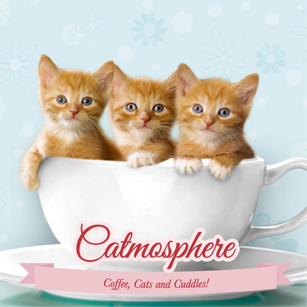 catmosphere-final.jpg