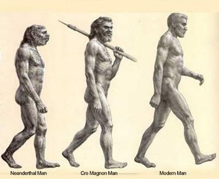 Se-aliaron-sapiens-lobos-contra-neandertales-3.jpg