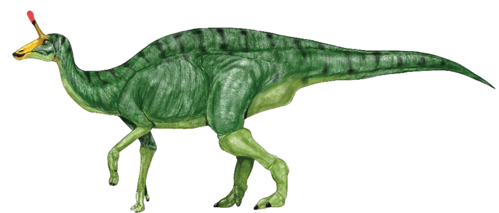 Green-dinosaur-clipart-image-8.png