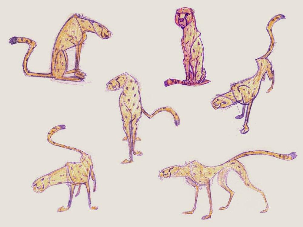 Cheetah.0.jpg