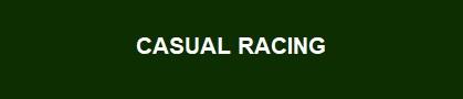 ARIAL 16 BOLD CASUAL RACING.jpg