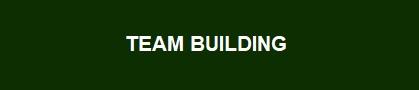ARIAL 16 BOLD TEAM BUILDING.jpg