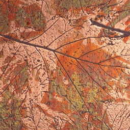 622G COPPER AUTUMN LEAVES