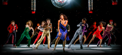 summer-the-donna-summer-musical-banner-75861.jpg