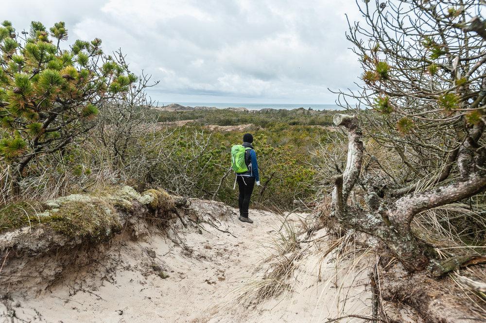 Hiking Thy, Denmark