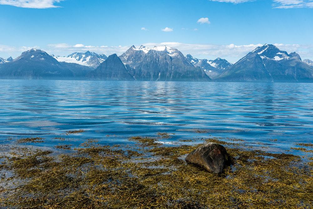 Fjord Landscape, Norway