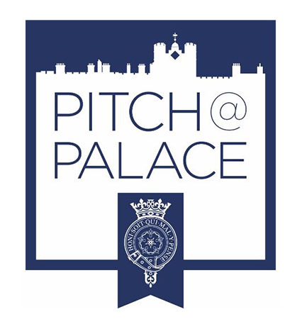 2 pitch of palace .jpg