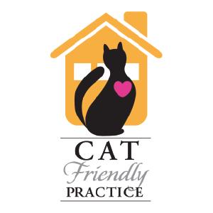 TVVGraphicPanels_CatFriendlyPractice33066.png