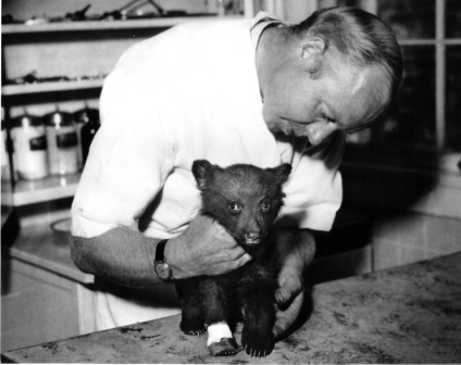 Dr. Ed Smith treating one of his famous patients...