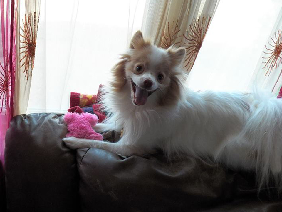 Chloe!