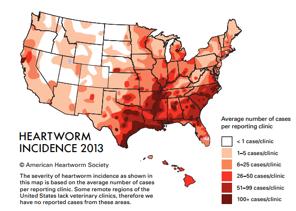 The latest incidence map provided by the American Heartworm Society