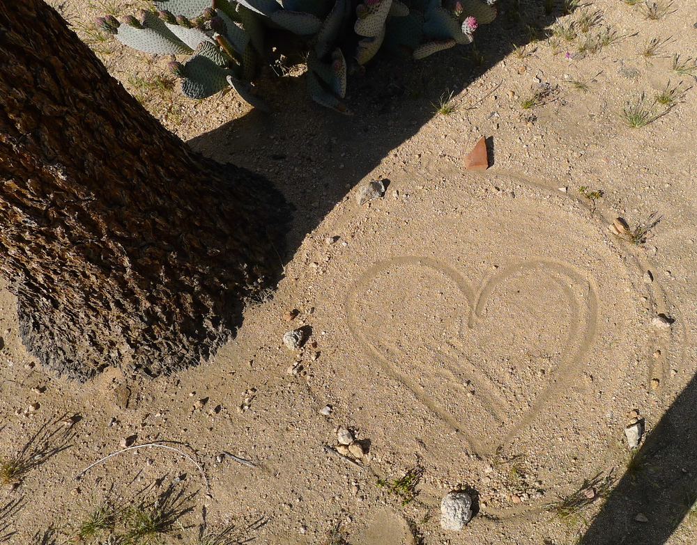 Closing of my first sand painting, offering unconditional love to all sentient beings~
