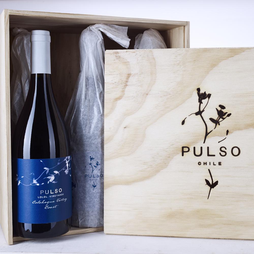 Ximena y Pulso30584c+b.jpg